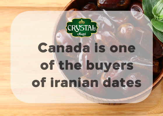 Canada is one of the buyers of iranian dates