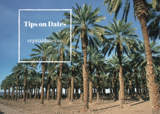Tips on Dates