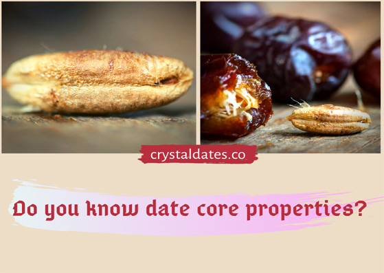 Do you know date core properties?
