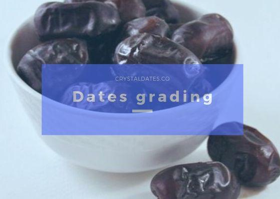 Dates grading