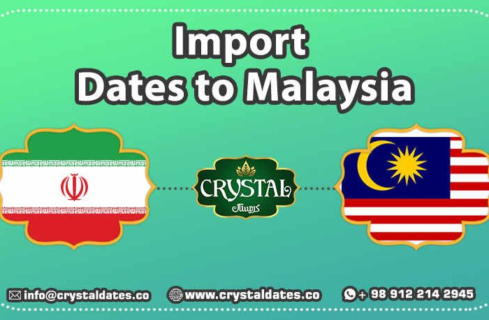 Imports Dates to Malaysia