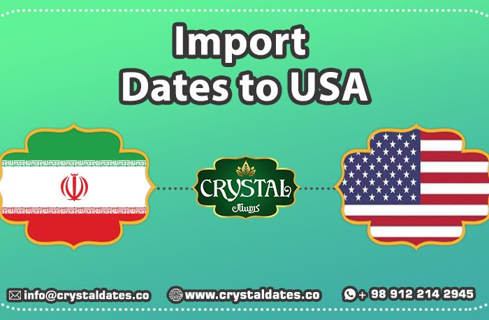 import dates to america