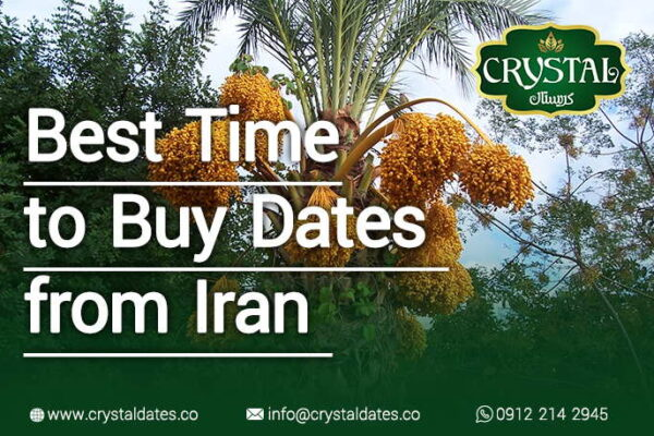 The best time to buy dates from Iran