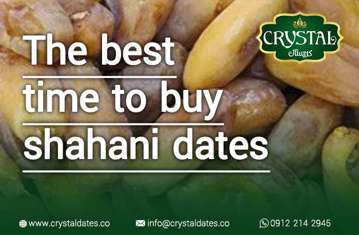the best time to buy shahani dates